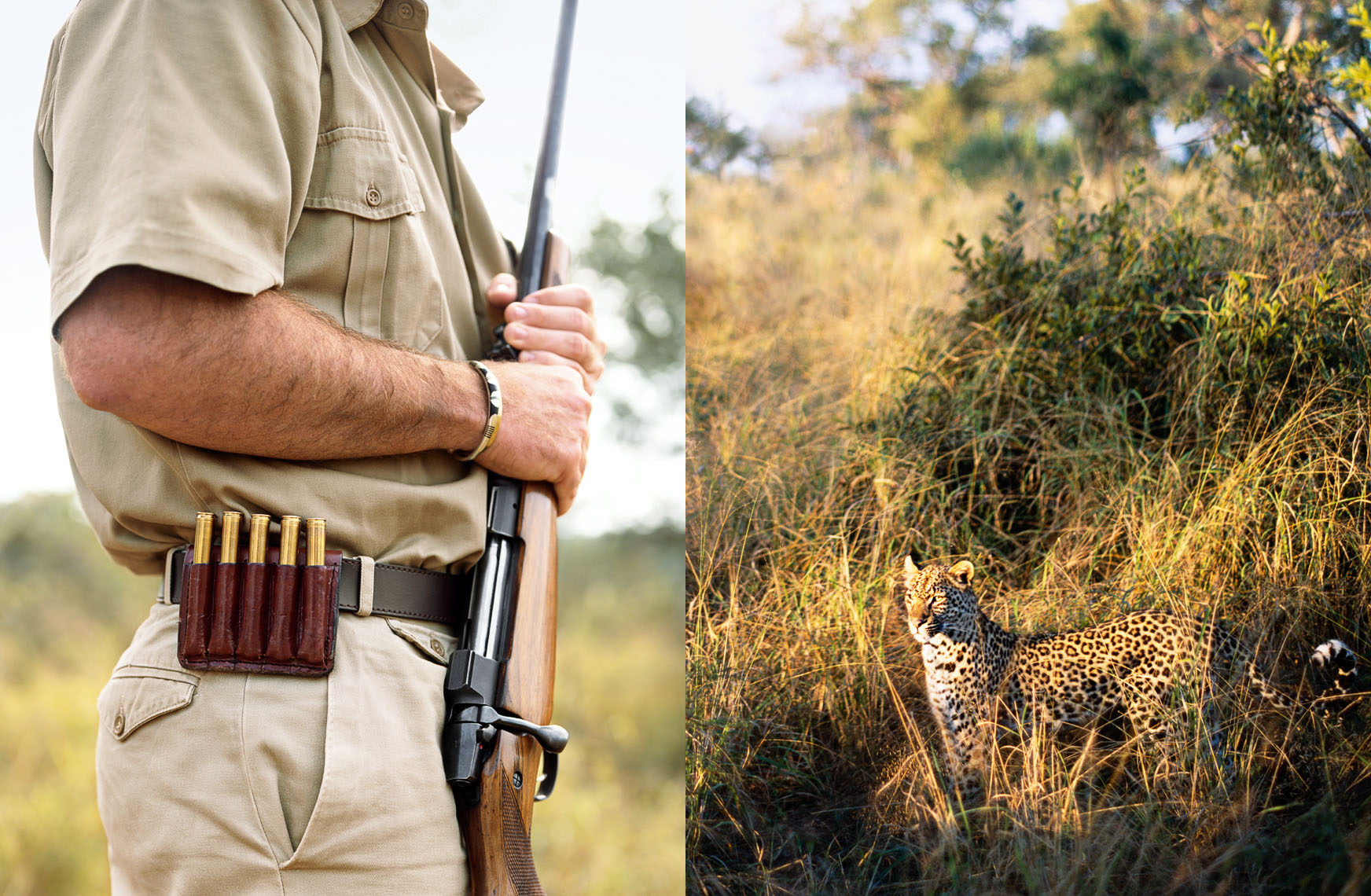 Ranger armed for protection, not hunting, from beautiful but dangerous animals, such as the cheetah